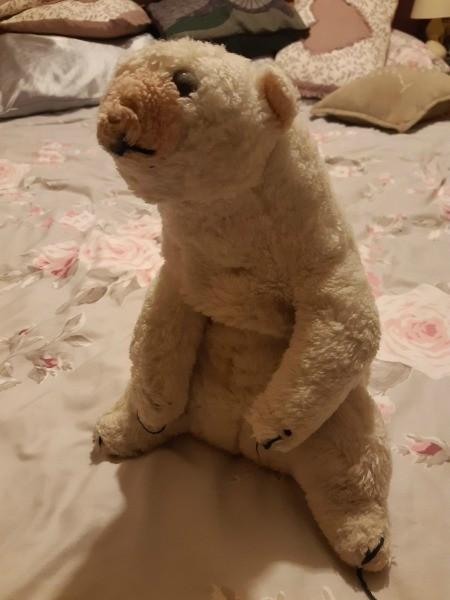 A stuffed polar bear.