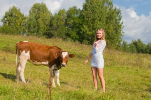 A girl near a cow in a grassy field.