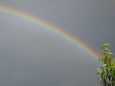 A rainbow in the sky.