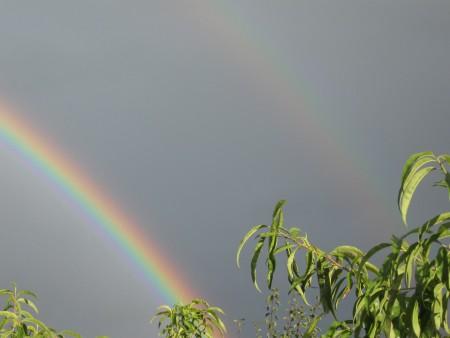 A double rainbow in the sky.
