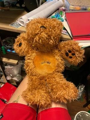 A stuffed brown bear.