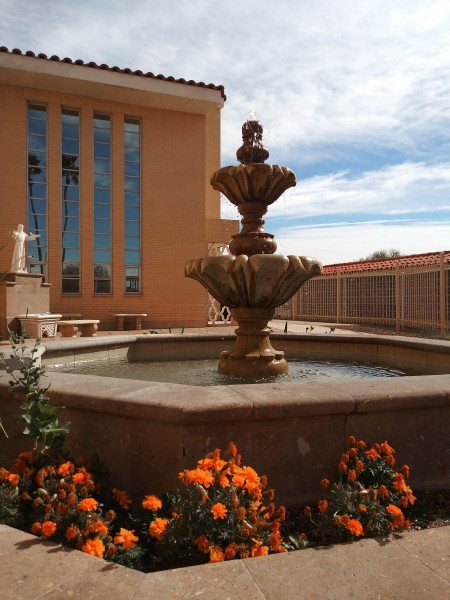 A fountain with orange flowers.