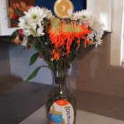 A plastic orange juice container being used as a vase.