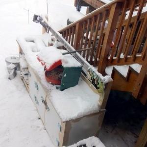 Birdseed inside a bin, keeping it out of the snow.