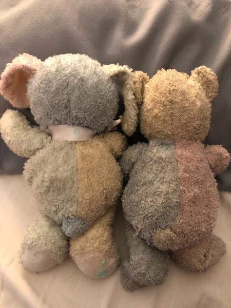 Two old stuffed bears.