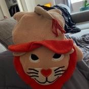 A stuffed lion.