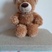 A tan stuffed bear.