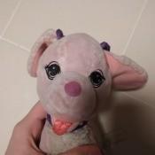 A small pink stuffed dog.