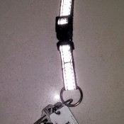 Using a reflective collar to hold keys.