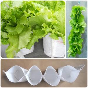 Vertical garden pots made from polypropylene.