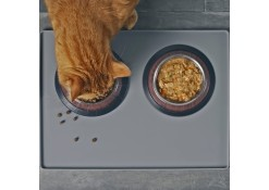 A cat eating food from a dish.
