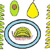 A drawing showing an avocado pear assembled on a plate.